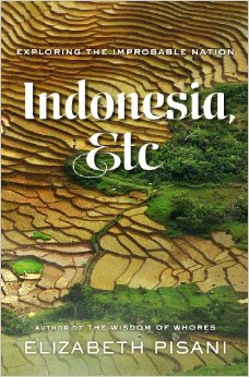 US cover of Indonesia Etc Exploring the Improbable Land by Elizabeth Pisani from WW Norton